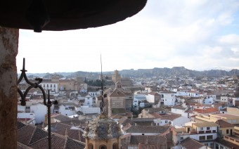La alcazaba en el conjunto urbano desde la torre de la catedral (MR)