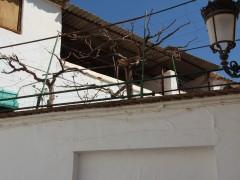 Lateral y cubiertas de terrazas (MR)