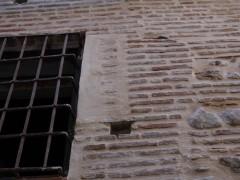 Detalle de la abertura de una ventana (JP)